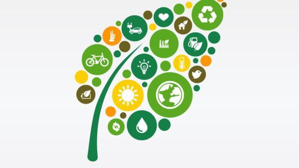 zeleno gospodarstvo