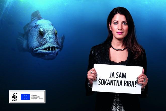 Martina Šubašić: Kako prepoznati održive proizvode iz ribarstva?
