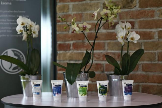 Ekspanzija prirodne kozmetike – sve uspješniji izvoz na strana tržišta