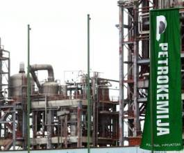 Petrokemija pokriva gubitke smanjenjem temeljnog kapitala