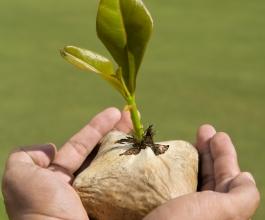 Širenje poslovanja u četiri koraka uz maksimalnu uštedu!