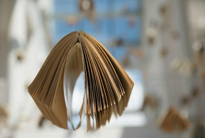 knjiga, papir