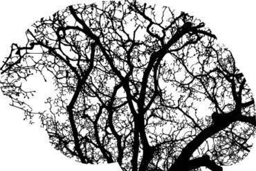 Emocionalna inteligencija – test
