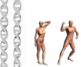Zašto žene žive dulje od muškaraca – tajna je u savršenijim genima