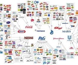 Imamo li izbora? Ovih 10 kompanija kontrolira svijet!