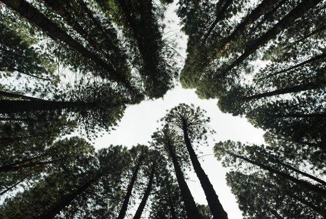 Postoji li napredak u korporativnom izvještavanju vezanom za klimu i okoliš