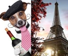 Pariz top destinacija za zamjenu doma