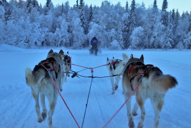 Zašto su Finci najsretniji narod na svijetu?