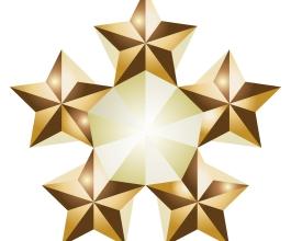 Pet veličanstvenih – najbolja hrvatska poduzeća u 2008. godini